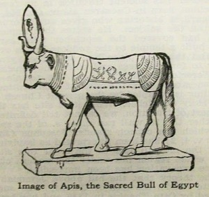 Illustration of Apis - the Sacred Bull of Egypt