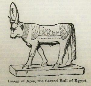 Illustration of Apis - the Sacred Bull of Egypt